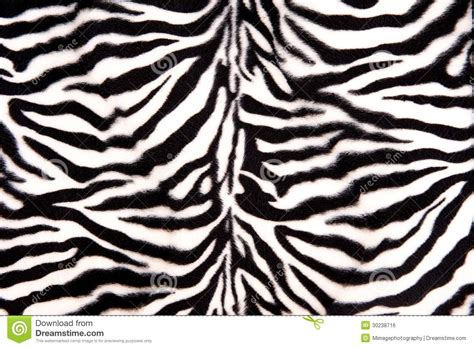 zebra pattern black and white black and white zebra pattern royalty free stock image
