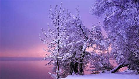 imagenes de jardines nevados vive la vida con estas bonitas fotos de paisajes nevados
