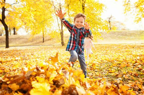 days of the fall a reporterâ s journey in the syria and iraq wars books 50 must do family fall activities today s parent