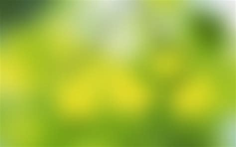 wallpaper soft green soft green 1680 x 1050 widescreen wallpaper