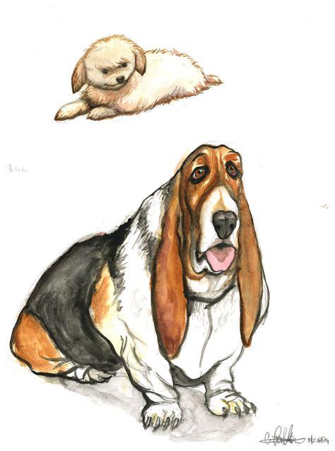 dog illustrations  christopher partellow  coroflotcom