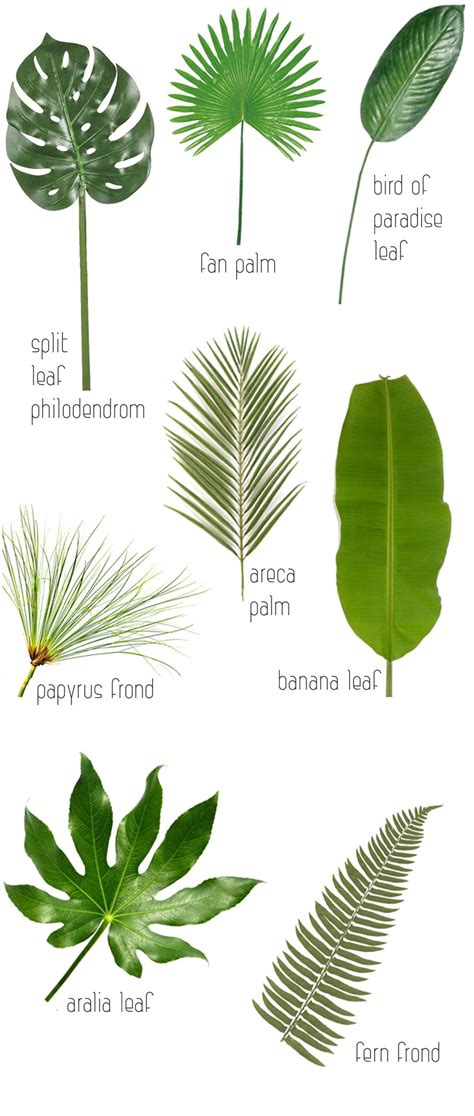themes in house of leaves trends 8 leaves to love tropical leaf decor ideas