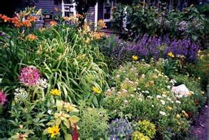 Planting A Perennial Flower Garden Enjoying The Beautiful Perennial Flowers In Your Frontyard Or Backyard Gardens Modern Home