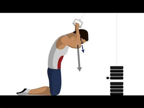 crunch  kabelzug bauchmuskeluebungen youtube