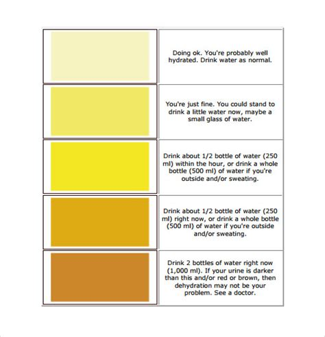 hydration chart hydration color chart pictures to pin on