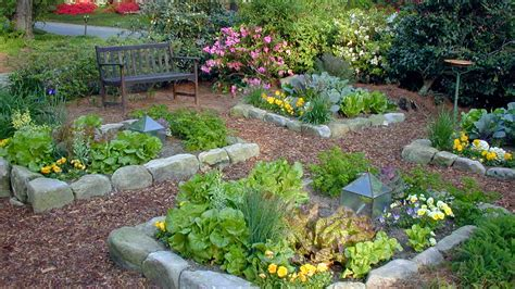 beautiful backyard designs backyard oasis beautiful backyard ideas gogo papa