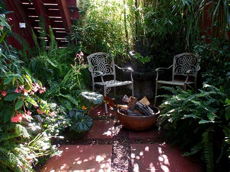 giving your patio a burst of tropical color in any climate