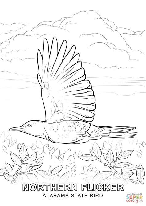 indiana state bird coloring page alabama state bird coloring page free printable coloring