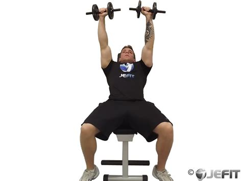 incline bench muscle group dumbbell incline bench press exercise database jefit