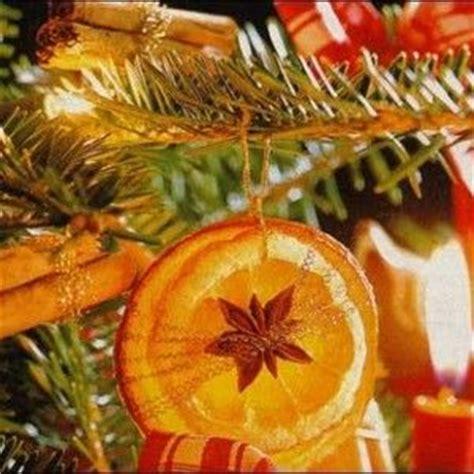 orange tree decorations 1000 ideas about orange tree on