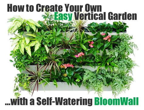 How To Start A Vertical Garden How To Create A Vertical Garden With A Bloomwall