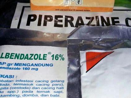 Obat Cacing Piperazin 5 nama obat cacing kremi di apotik pada anak dan ibu