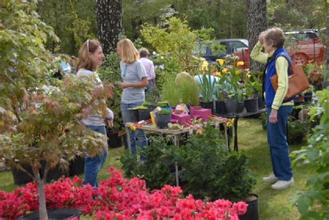 Bachman S Garden Center by Bachman Community Center Introduces Garden Home Show Times Free Press