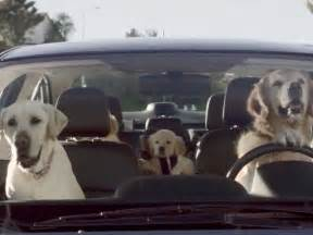 Subaru Commercial With Dogs Subaru Tested Caign Business Insider