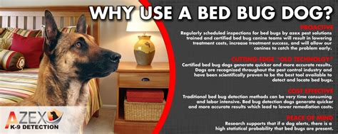 bed bug sniffing dogs bed bug detection dogs azex pest solutions bed bug