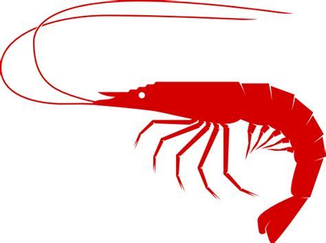 shrimp clip shrimp clip at clker vector clip