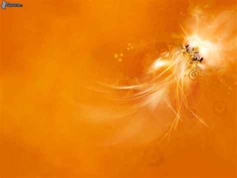 Wedding Background Orange by Abstrait