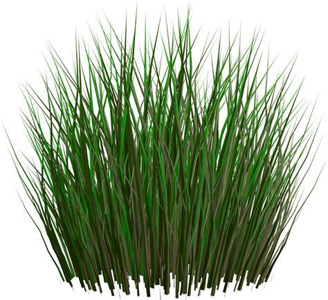 Gambar Rumput Format Png   membuat rumput dengan standard shader di unity froyo