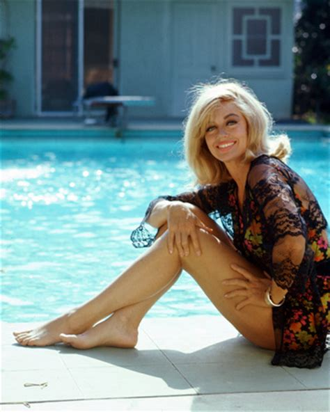 dorothy malone the private life and times of dorothy dorothy malone photo poster and print