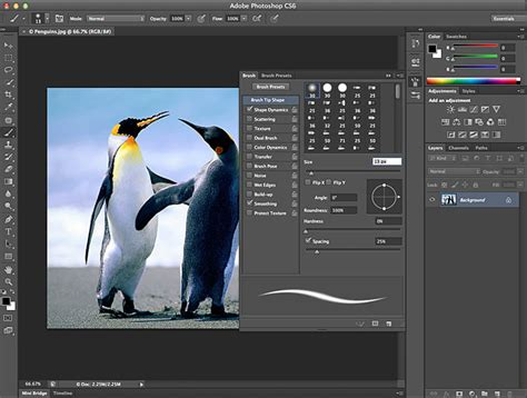 photoshop software free download for pc windows xp full version adobe photoshop cs6 free download with crack file free