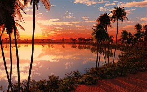 tropical wallpaper 25222 1920x1200 px hdwallsource com