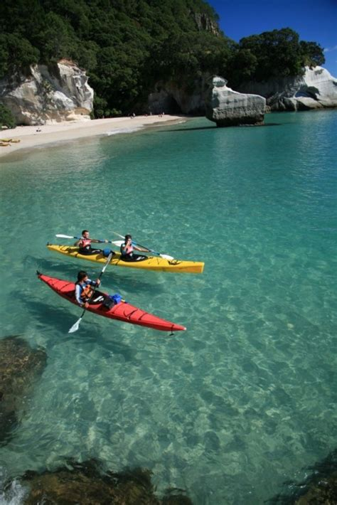 cathedral cove kayaks hahei