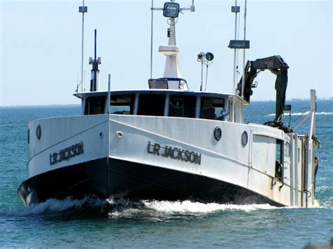 boat sinking by miller ferry 117 best images about fish on on pinterest lake erie