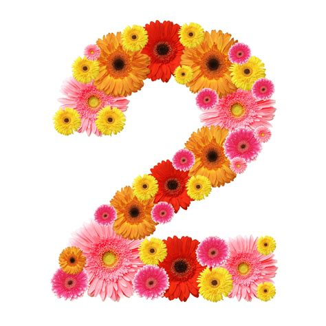 Where Is 2 numerology secrets of your birthday 2nd 11th 20th