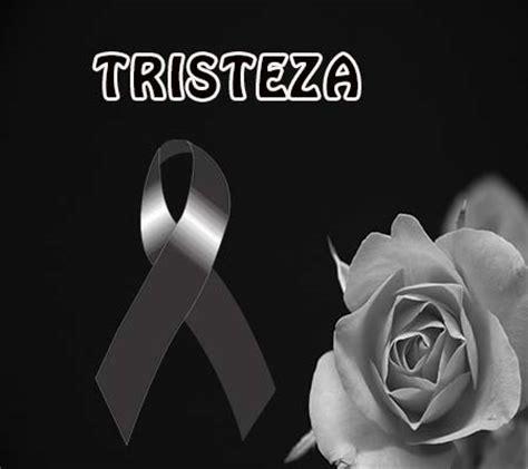 imagenes de tristeza rosas rosas blancas de luto imagenes de luto