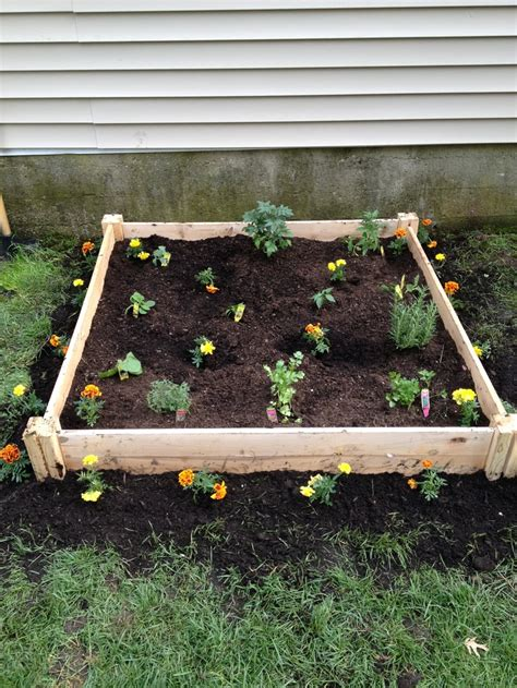 above ground vegetable garden it is so easy plants