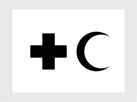 design limitation meaning a pictogram language designed for the displaced