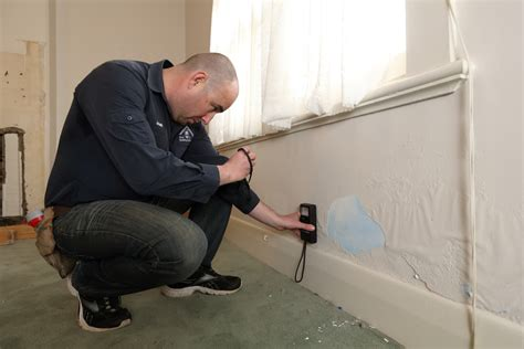 what is a building inspection jims building inspections