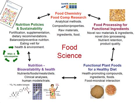 science food areas of research in food science food ideas