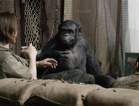 awn of the planet of the apes new dawn of the planet of the apes pics the humans are