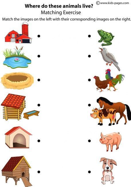 printable worksheets animal homes matching animals to their home this is a fun way take the