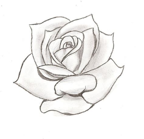 rose tattoo template stencil designs tattoos