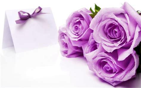 arti penting  bunga mawar  kamu  tahu