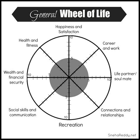 wheel of life assessment you living your best life here