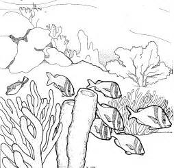 coral reef clipart black and white coral reef pencil coloring pages