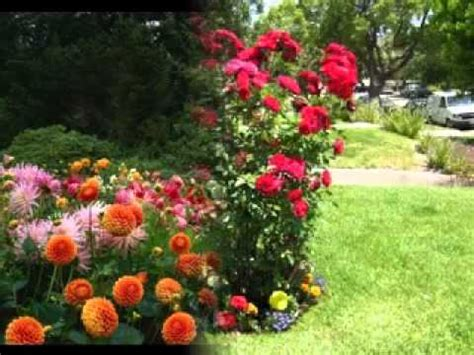 flower garden ideas pictures small flower garden ideas