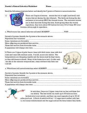 Darwin S Selection Worksheet by Selection 226 Darwin S Five Points Fulton County Schools