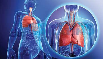 test di broncodilatazione farmacologica broncopneuomologo centro diagnostico sabatino