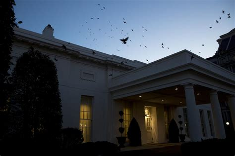 shooting at the white house secret service possible self inflicted shot by white house