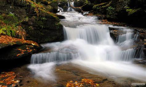 wallpaper keindahan alam bergerak download gratis wallpaper relaksasi keindahan alam