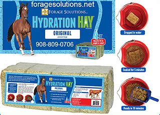 hydration hay information care info