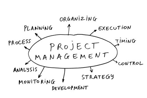 project management denizon