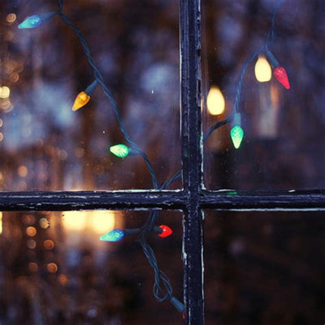 xmas window lights images