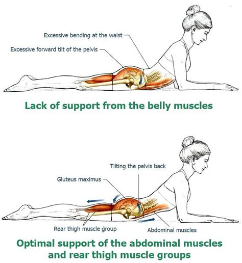 back stretches develop posture and relieve back health exercise