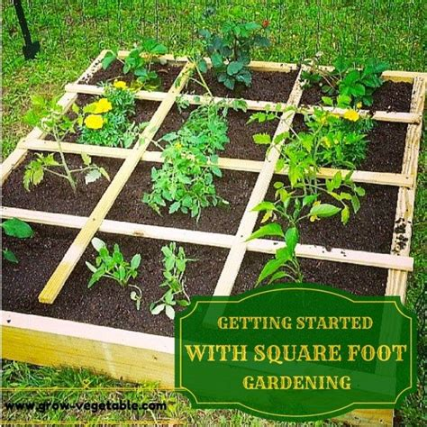 square foot garden layout ideas 25 trending square foot gardening ideas on
