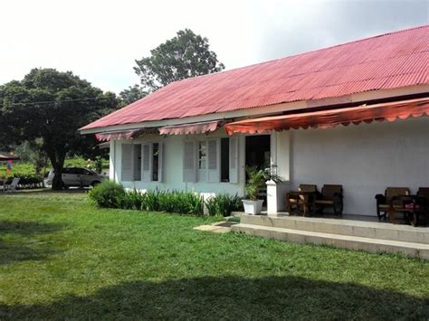 Teh Ndoro Donker suasana pegunungan picture of ndoro donker tea house